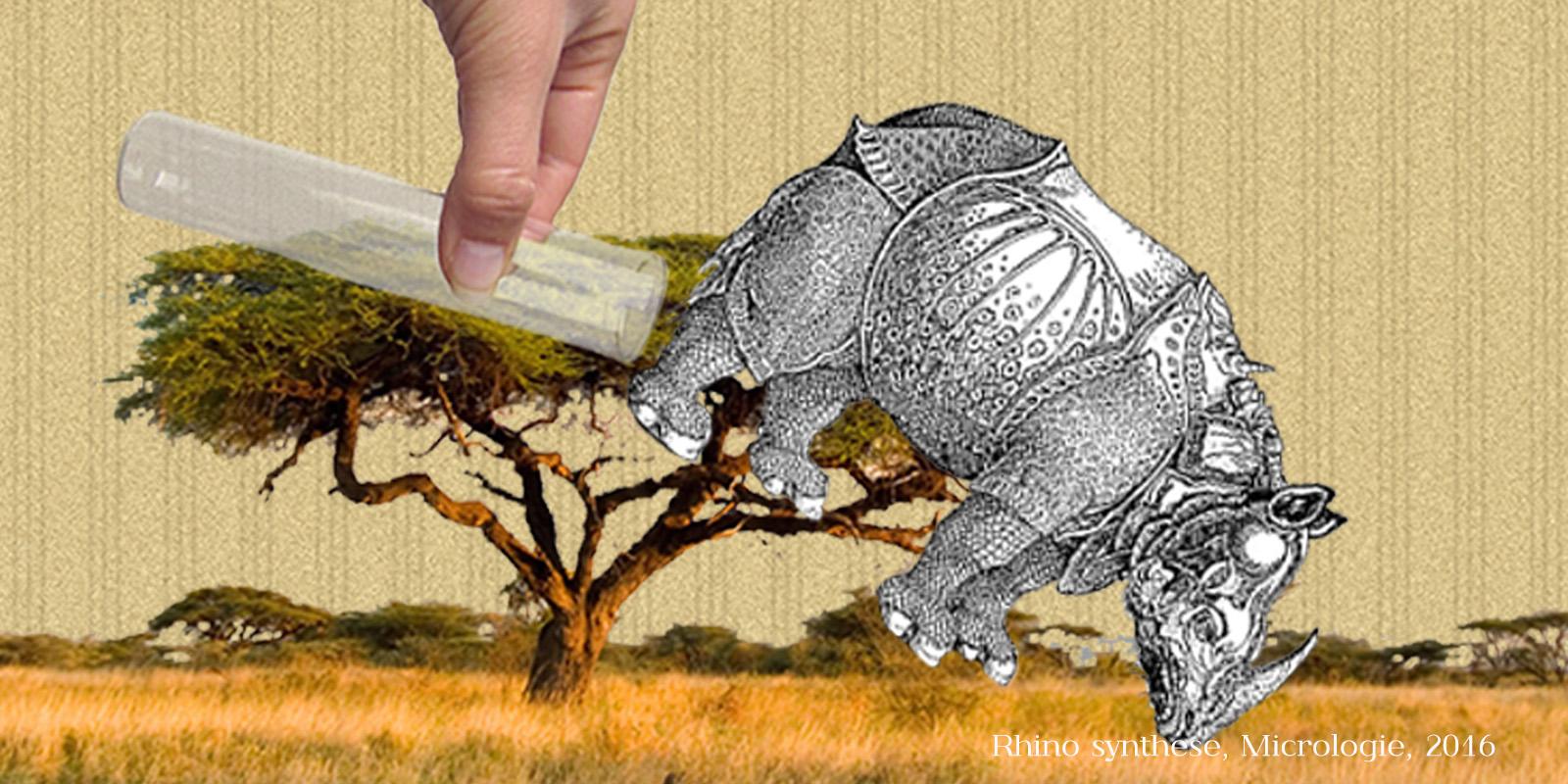 Rhinocéros de synthèse, micrologie