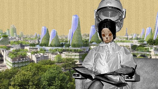 Biomimétisme et langue de chat, Micrologie
