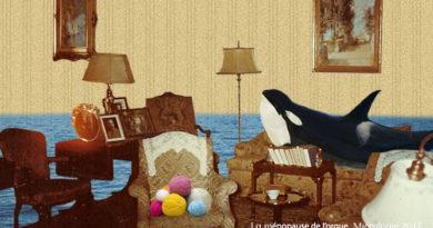 La ménopause de l'orque, Micrologie