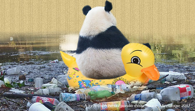Un panda d'eau douce pour sensibiliser à la protection des rivières, Micrologie