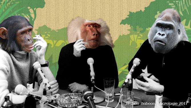 Les babouins font des vocalises, Micrologie