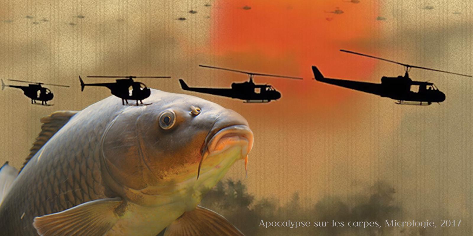 Apocalypse sur les carpes, micrologie