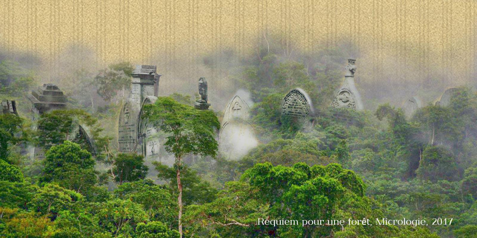 Requiem pour une forêt, micrologie