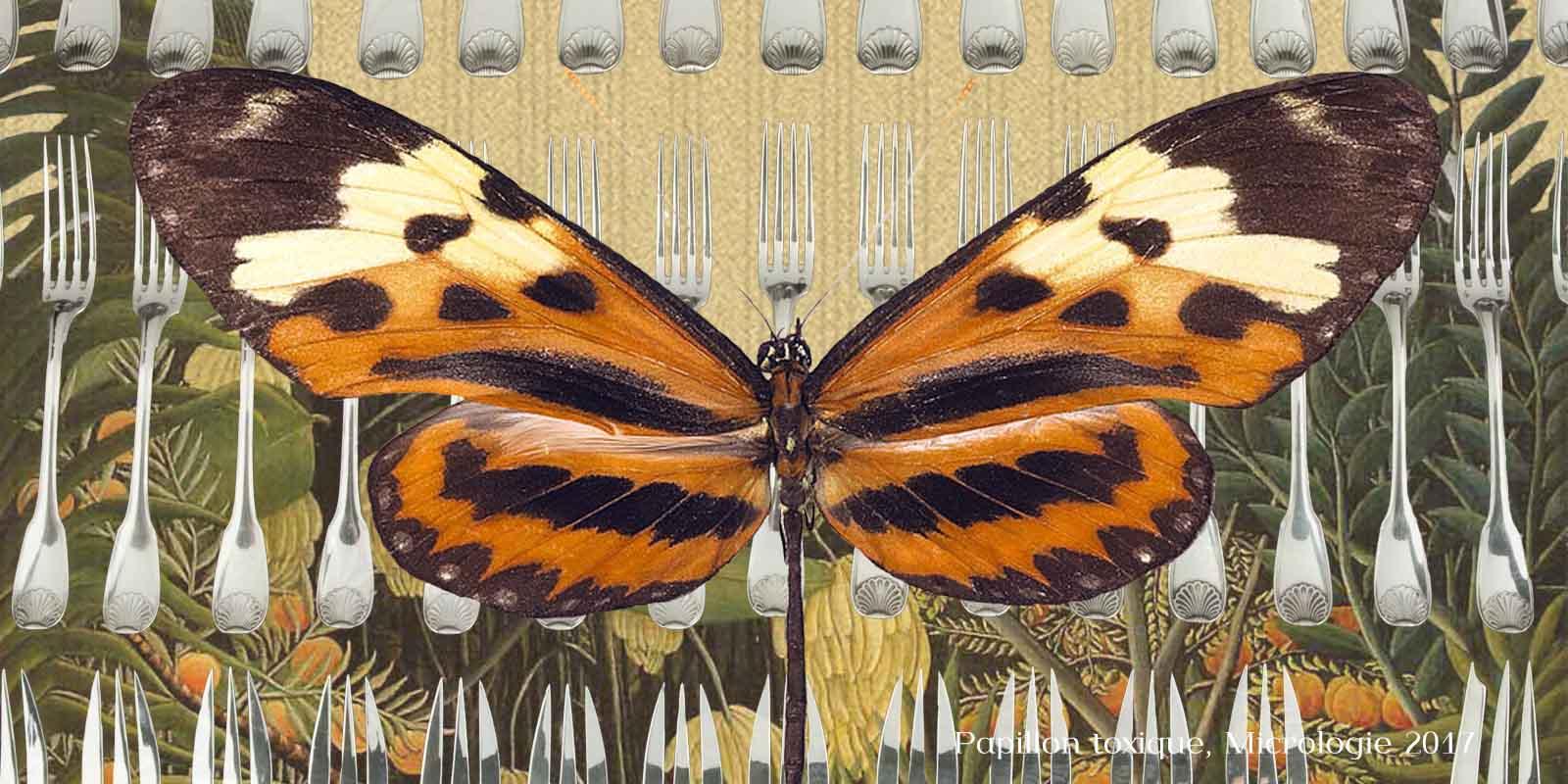 Esprit d'équipe chez les papillons, micrologie