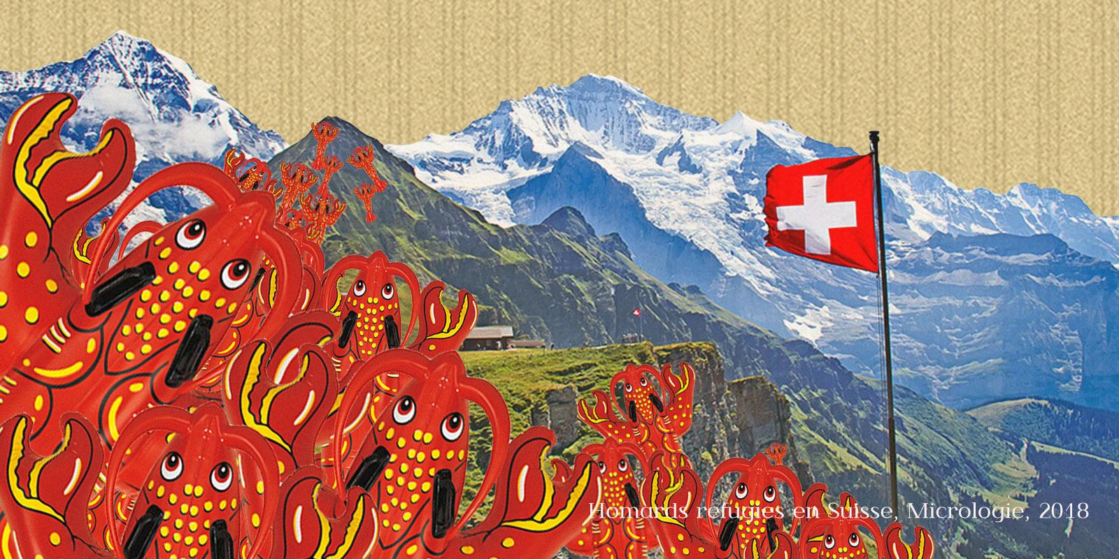 homards réfugiés en suisse, micrologie